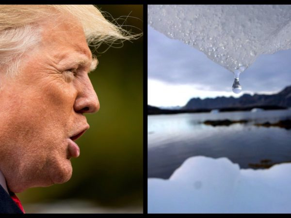 Trump Is Wrong About Global Warming And The Polar Vortex